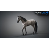 10 48 06 219 3d animated horses 043 4