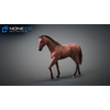 10 48 06 373 3d animated horses 044 4