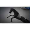 10 48 06 486 3d animated horses 046 4