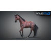 10 48 06 601 3d animated horses 047 4