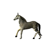 09 20 11 944 zebra poses 0005 4