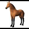 11 11 03 696 horse 0001 4