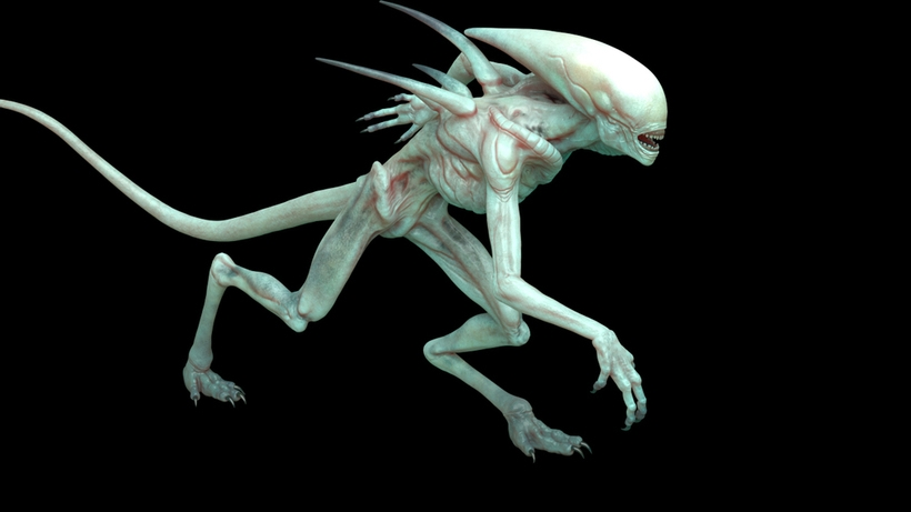 Free Alien Covenant Maya rig for Maya - Free Character Rigs