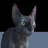 13 45 48 162 cat 1  4