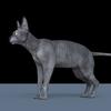 13 45 48 596 cat 5 4