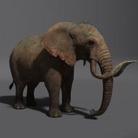 Free Elephant Maya Rig 0.0.1 for Maya