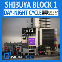 Tokyo Shibuya Block 1 3D Model