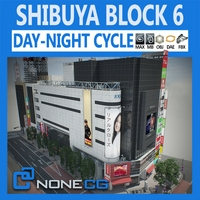 Tokyo Shibuya Block 6 3D Model