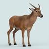 13 21 16 53 realistic wollaton deer 05 4