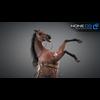 11 44 34 529 horse vray 02 4