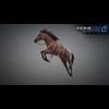 11 44 35 674 horse vray 12 4