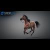 11 44 36 233 horse vray 18 4