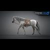 11 44 36 636 horse vray 21 4