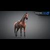 11 44 36 74 horse vray 11 4