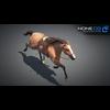 11 44 37 169 horse vray 20 4