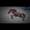 11 44 37 691 horse vray 25 4