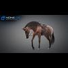 11 44 37 703 horse vray 34 4