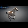 11 44 38 150 horse vray 35 4