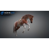 11 44 38 716 horse vray 41 4
