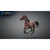 11 44 39 210 horse vray 42 4