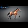 11 44 39 567 horse vray 47 4