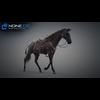 11 44 39 611 horse vray 49 4