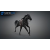 11 44 39 916 horse vray 51 4