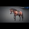 11 44 40 309 horse vray 48 4