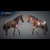 11 44 40 454 horse vray 55 4
