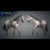 11 44 40 637 horse vray 57 4