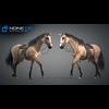 11 44 40 639 horse vray 58 4