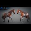 11 44 40 81 horse vray 54 4