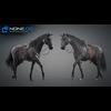 11 44 41 408 horse vray 59 4