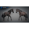 11 44 41 629 horse vray 65 4