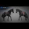 11 44 42 396 horse vray 69 4