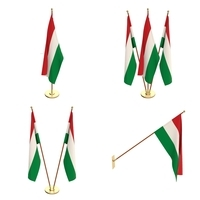 Hungary Flag Pack 3D Model