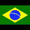 21 13 33 560 brazil 4