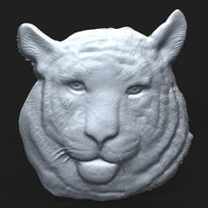 Siberian Tiger Head bas relief 3D Model
