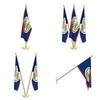 Belize Flag Pack 3D Model