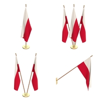 Poland Flag Pack 3D Model