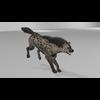 20 40 26 307 hyenapic2 4