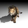 01 05 20 783 lionpic4k5 4