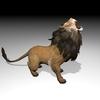 01 05 21 25 lionpic4k2 4