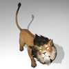 01 05 24 837 lionpic4k3 4