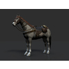 15 03 51 117 001 horse revamp 4