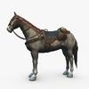 15 03 51 151 000 horse revamp 4