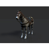 15 03 51 154 003 horse revamp 4