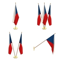 Czech Republic Flag Pack 3D Model