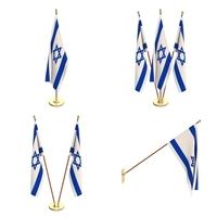 Israel Flag Pack 3D Model