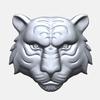 14 10 29 489 tiger 1  4